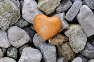 heart-526661